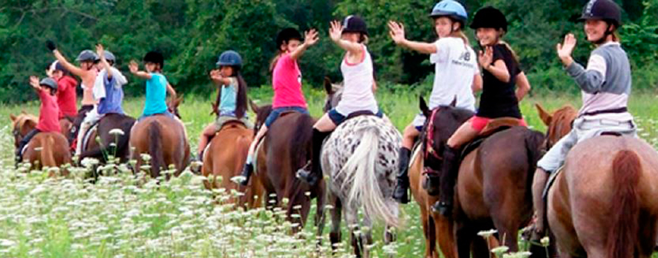 Be a part of Georgia 4-H by participating in the new 4-H Trail Riding Program