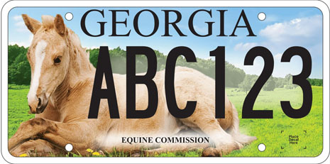 New GA Equine Tag